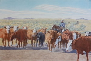 Sage Country Cattle Drive