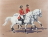 The Lipizzans